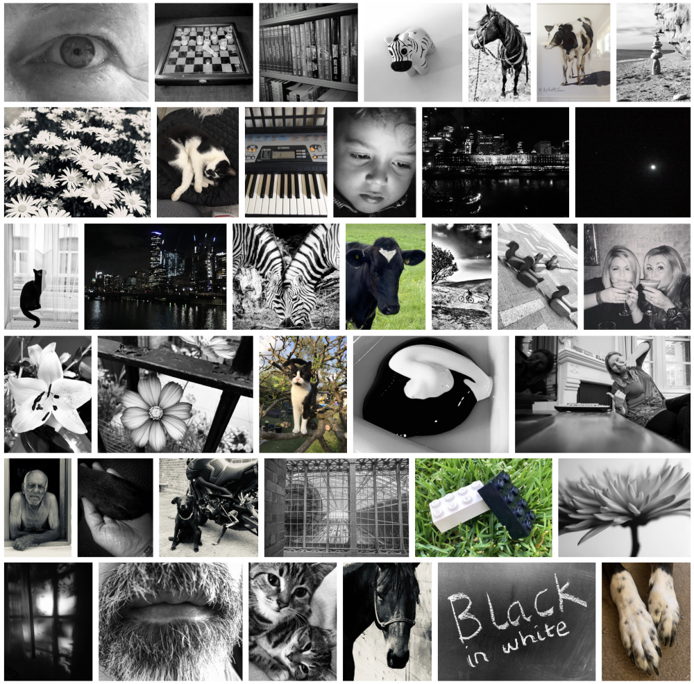 B&W Entries